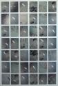 <b>Muro de los lamentos - Dimensiones variables - 2009</b><br>Serigrafia y fotografia s. aluminio